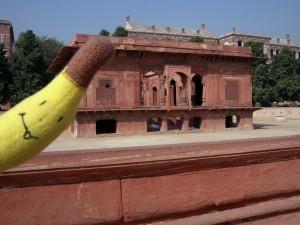 Banan w Indiach