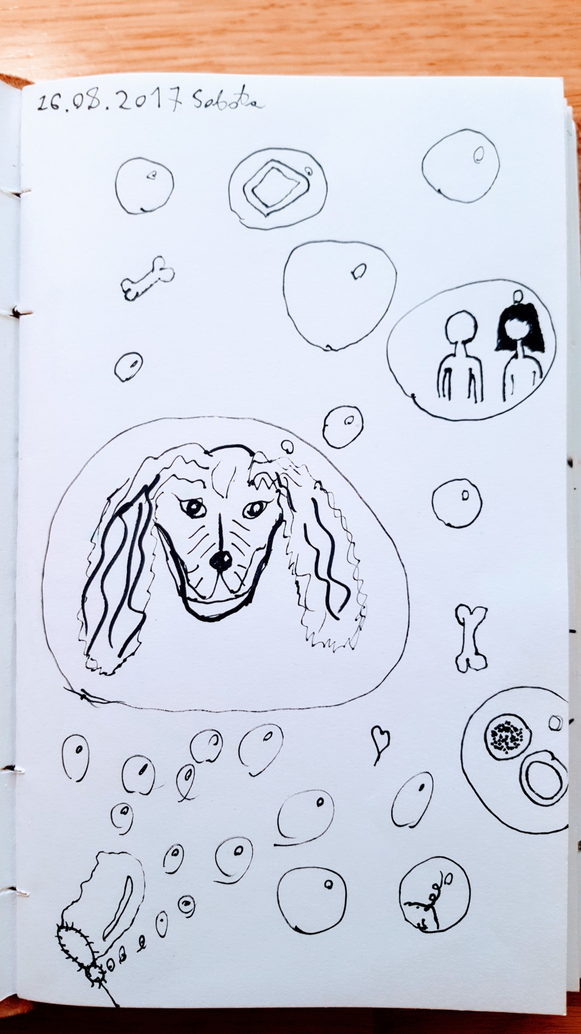 Pierwszy obrazek w serii. Spacer po Błoniach, bańki mydlane i pies, którego prowadziliśmy.